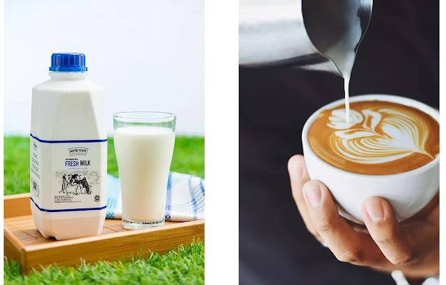 Manfaat Susu Pasteurisasi