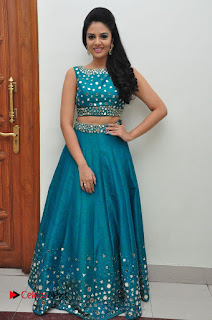 Sree Mukhi Pictures at Gentleman Audio Launch  0151