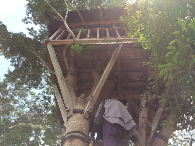 Rumah pohon di Taman Botani Sukorambi