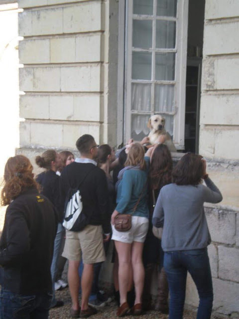 """We were at an excursion in the city-museum, and suddenly we noticed the best exhibit in a window."""