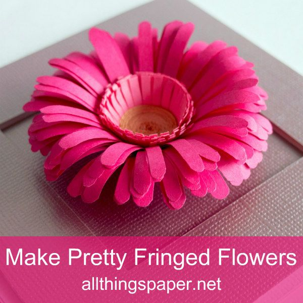 pink fringed paper flower on mauve square greeting card