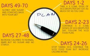 Zumba fitness fat loss