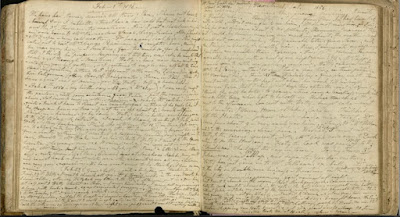 Pages from Mary Wild diary