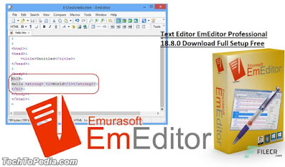 Text Editor EmEditor Professional 18.8.0 Download Full Setup Free
