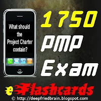 Review of PMP Exam eFlashcards