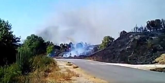 Δυσκολεύει η κατάσταση με τη φωτιά στο Γαρδίκι Παραμυθιάς - Ανακληθήκαν τα ρεπό ολης της δύναμης της πυροσβεστικής Παραμυθιάς (ΦΩΤΟ+ΒΙΝΤΕΟ)