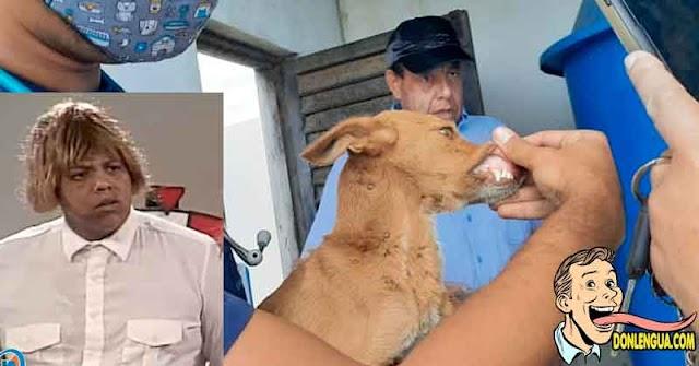 El Coconazo ya no podrá seguir torturando perros ahora en la cárcel