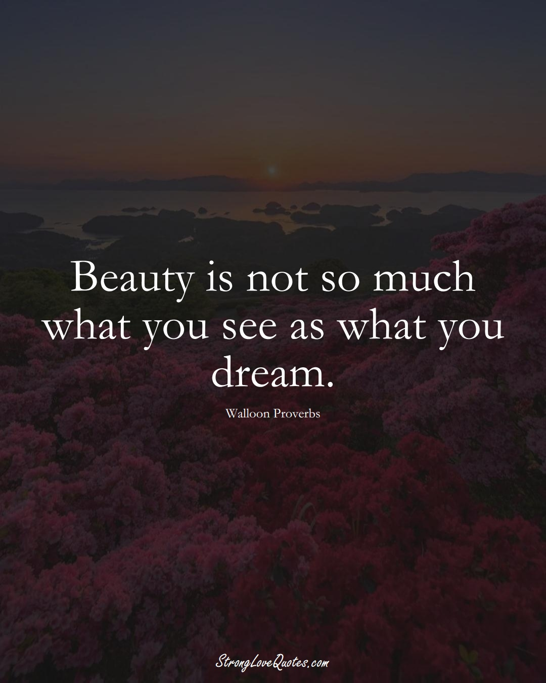 Beauty is not so much what you see as what you dream. (Walloon Sayings);  #aVarietyofCulturesSayings