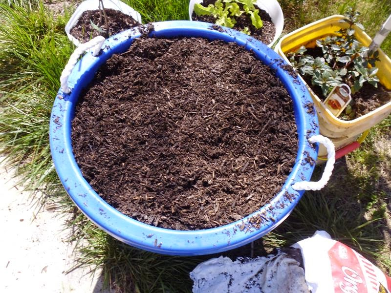 Filling container with soil