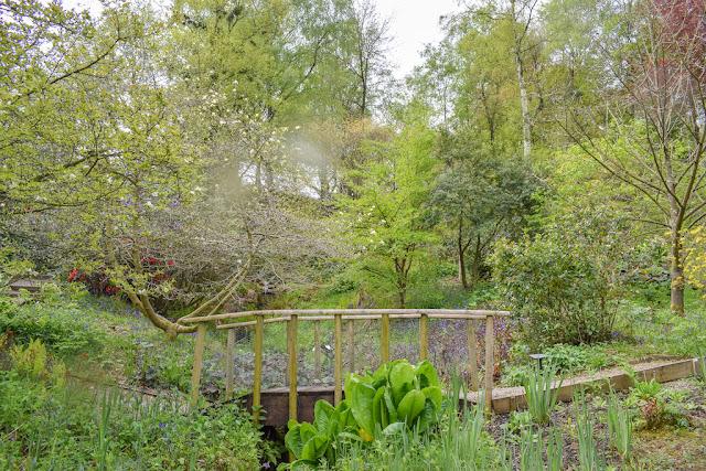 Himalayan Garden and Sculpture Park wooden bridge over greenery