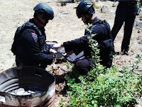 Granat Aktif Yang Ditemukan Warga Balocci Akhirnya Dimusnahkan Tim Gegana Polda Sulsel