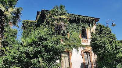 Palazzo muschiato