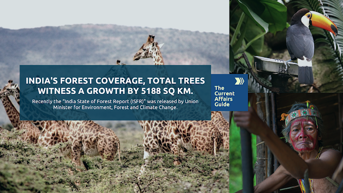 India's Forest Coverage, Total Trees witness a growth by 5188 SQ KM.
