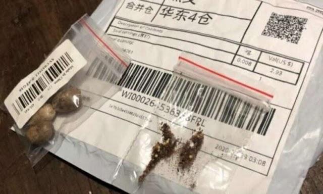 Alerta: pacote chinês com sementes misteriosas chega na casa de brasileiros