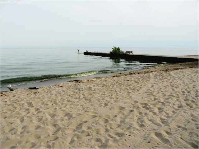 Aguas Verdes en las Playas de las Islas de Toronto