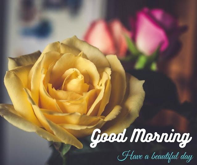 good morning images in flower
