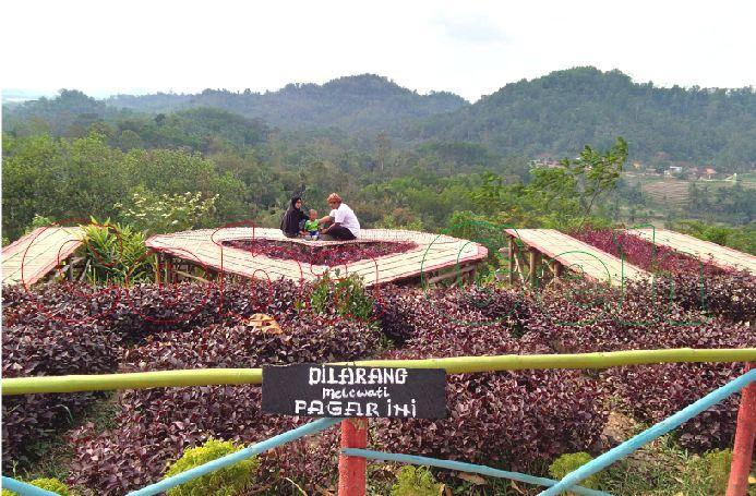 Coba Geh Bukit Pangonan Icon Wisata Alam Kota Pringsewu Lampung