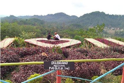 Bukit Pangonan Icon Wisata Alam Kota Pringsewu Lampung