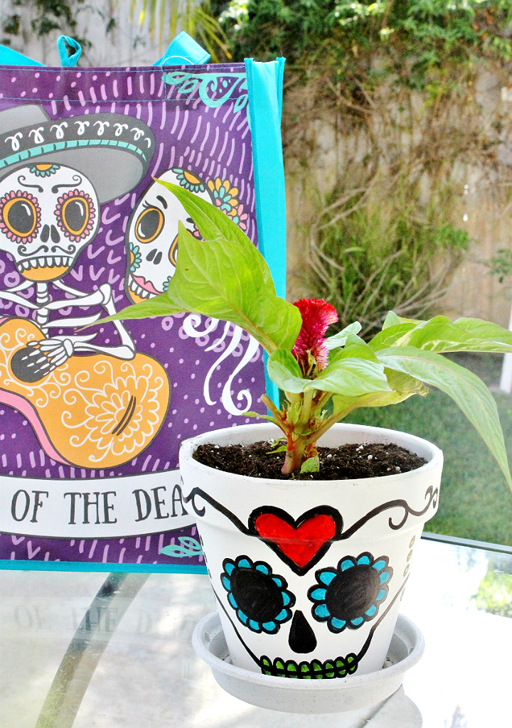 DIY Calavera Plant Pot - 5 Budget Friendly Pet Costume Ideas #DoThe99 #99Obessed #AD