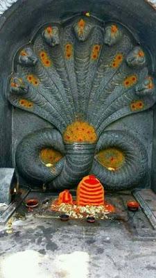 Naga Stotram Malayalam Lyrics Sarpa Stotra