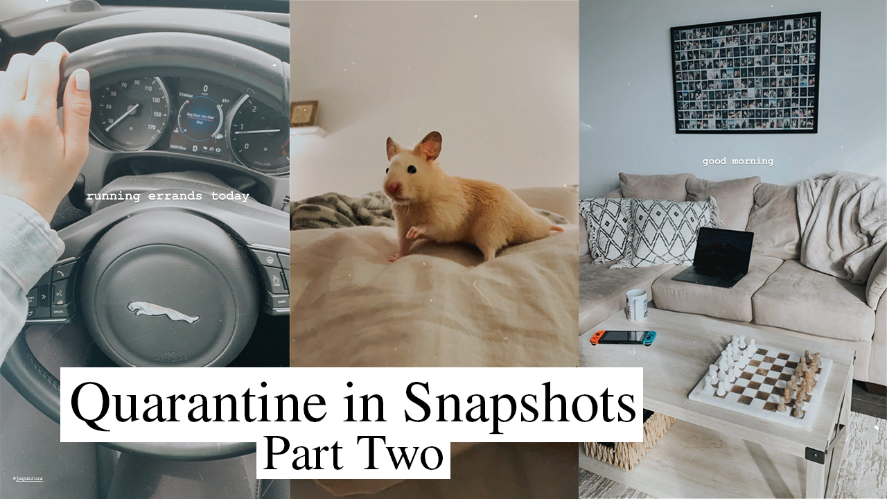 My Quarantine In Snapshots Part Two