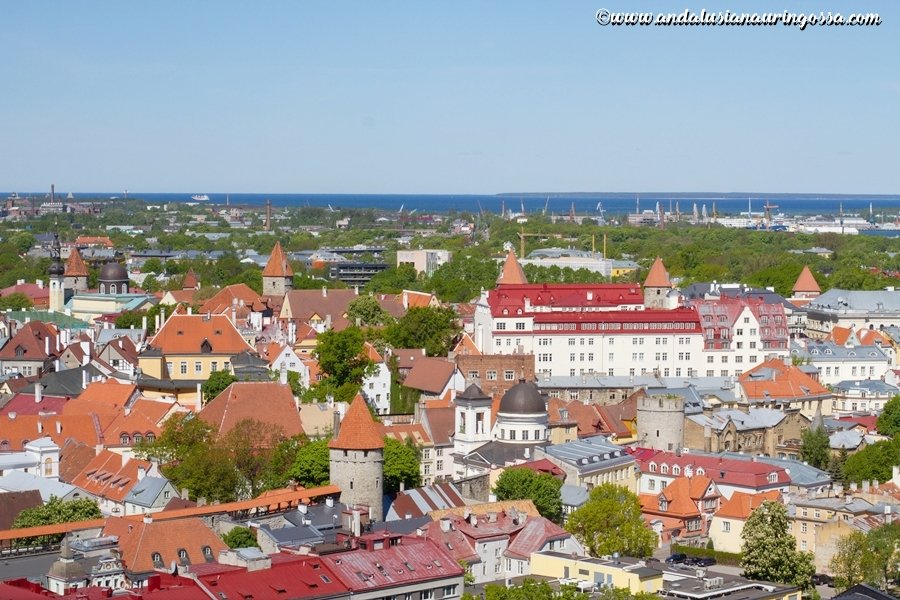 Viru-hotelli_KGB-museo_Tallinna_Andalusian auringossa_ruokablogi_matkablogi_10