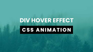 Div Hover CSS Animation