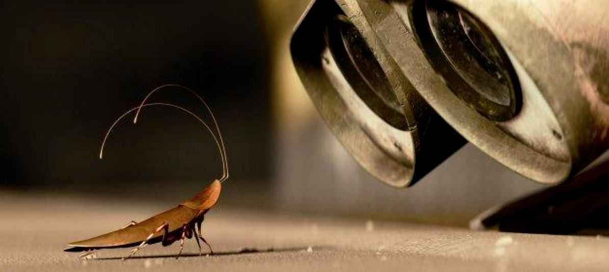 A barata – WALL-E