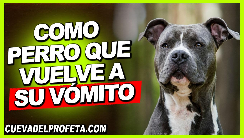 Como perro que vuelve a su vómito - William Branham en Español