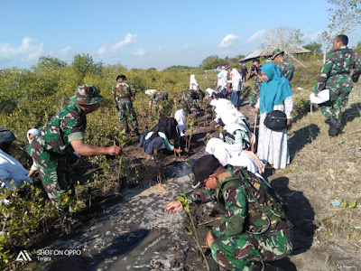 Cegah Abrasi pantai, Satgas TMMD ke 105 Kodim 1615/Lotim Tanam Pohon Mangrove