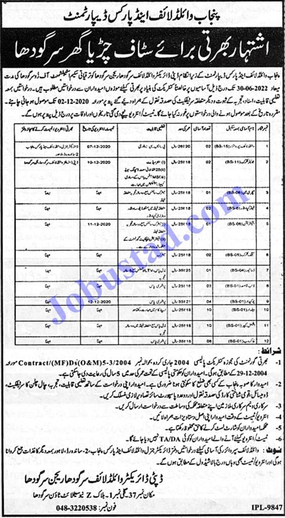 Jobs in Wildlife and Parks Department Sargodha Nov 2020