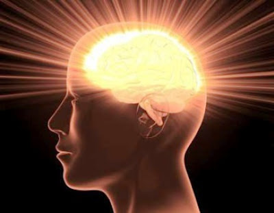6 Makanan Dan Vitamin Penambah Daya Ingat Otak | Roliyan.com