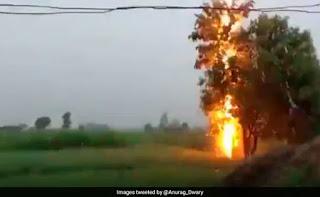मध्यप्रदेश के पन्ना में पेड़ पर गिरी बिजली, VIDEO हुआ वायरल