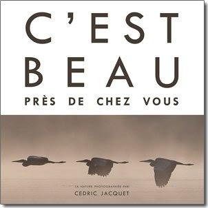 C'est beau près de chez vous - Cédric Jacquet - Racine Délire de Lire Ciney