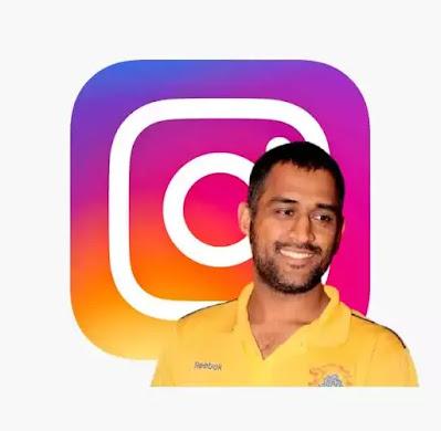 Instagram bio for dhoni fans