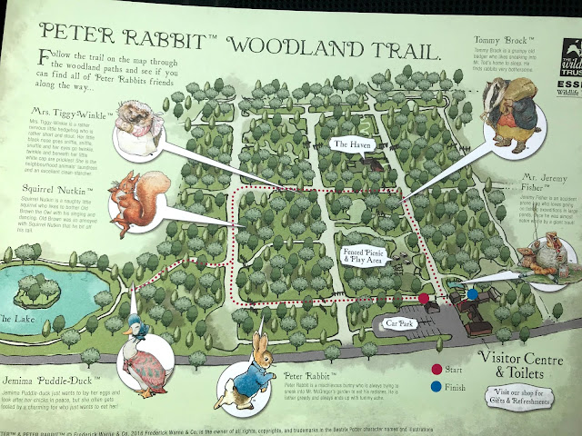 A copy of the Peter Rabbit Woodland Trail Map While The Visitors Centre is closed