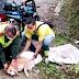 Policía salvó a un canino de morir ahogado