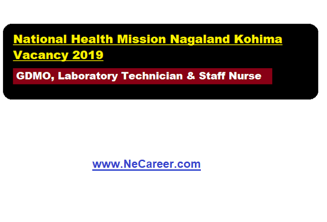 NHM Nagaland Vacancy 2019 (June)