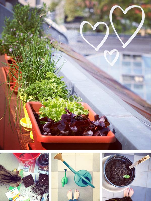 http://aentschie.blogspot.de/2014/04/unser-gruner-balkon.html