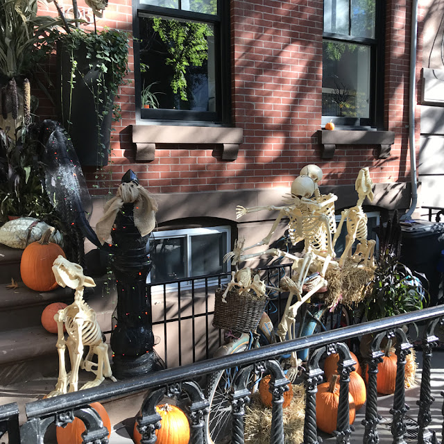 Halloween Season is Here! | Linzer Lane Blog