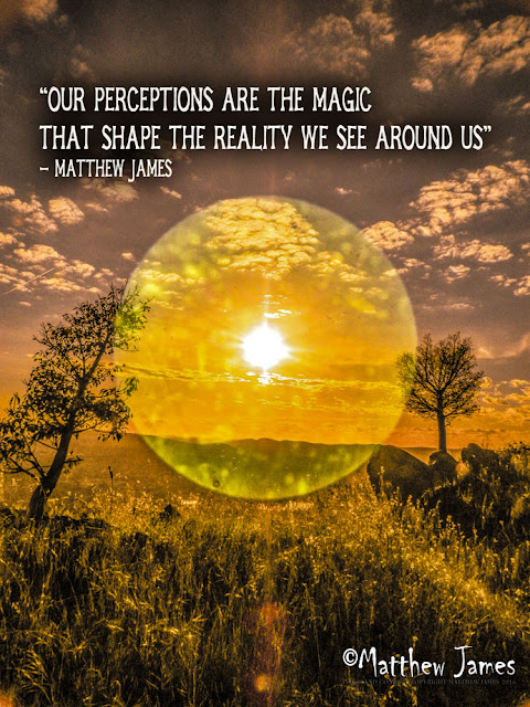 """Our perceptions are the magic that shape the reality we see around us"" - Matthew James"