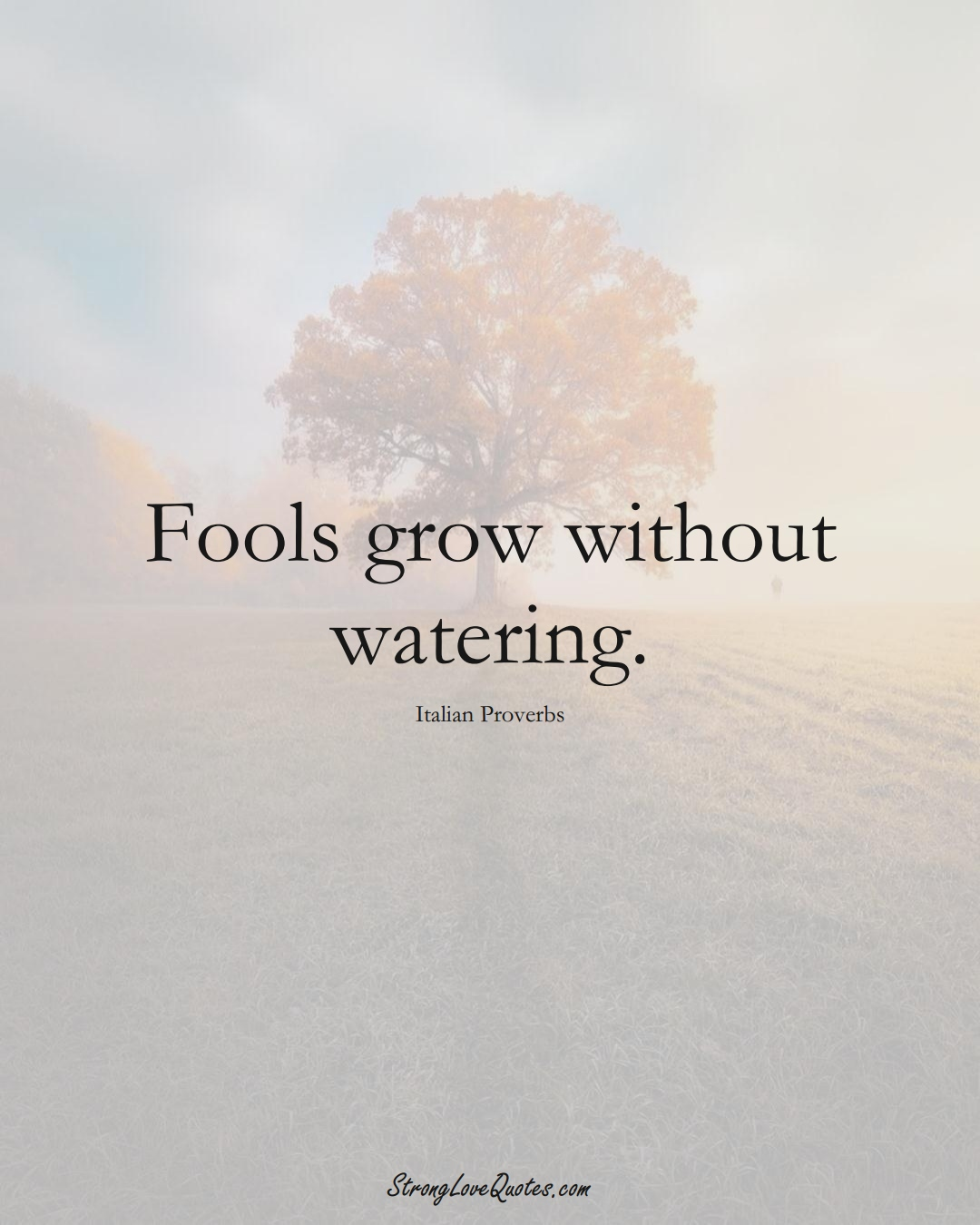 Fools grow without watering. (Italian Sayings);  #EuropeanSayings