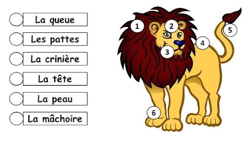 السنة السادسة : وصف حيوان بالفرنسية