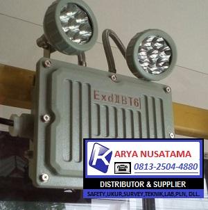 Jual Emergency Qinsun BJD320 LED Ex-Proof (1) di Makasar