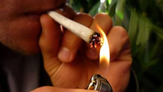 stf aplica insignificancia posse cigarro maconha