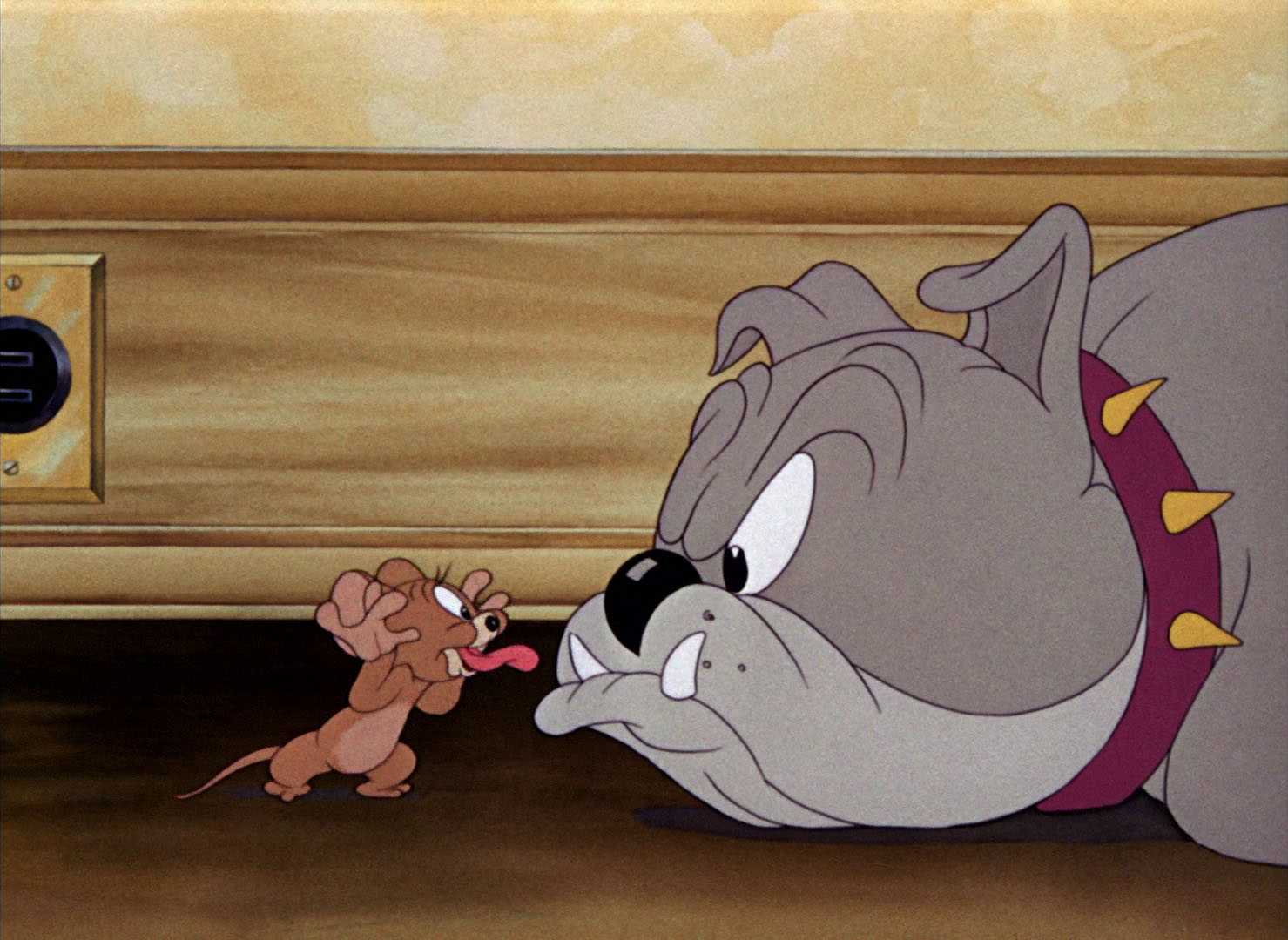 dog high chair harry potter tom & jerry pictures: