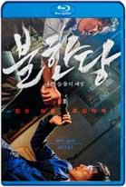 The Merciless (2017) HD 720p Subtitulados