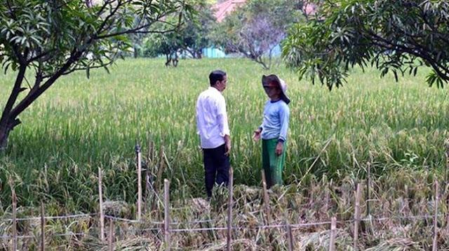 Kritik Jokowi, PKS: Presiden Membela Petani Mana, Indonesia Apa Asing?