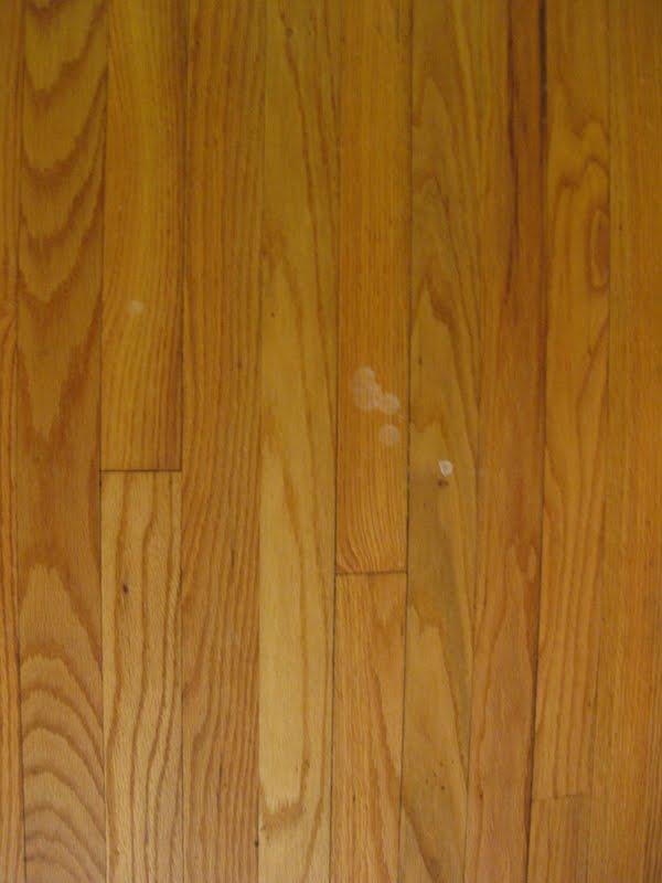The Green Goddess Product Review Bona Hardwood Floor Cleaner