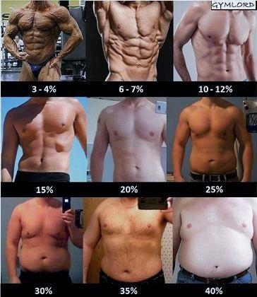 Tỷ lệ phần trăm mỡ cơ thể nam bodyfat
